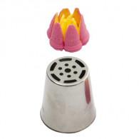 Tulpe delicate 6 Petals Nr: 246